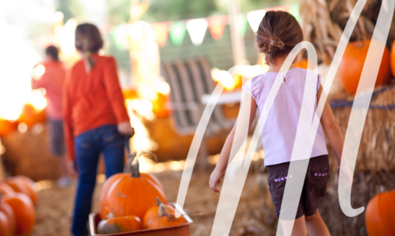 Great Community Events in Plano This Fall